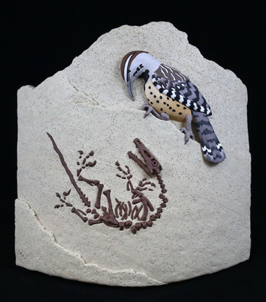 Dinosaur <--> Bird