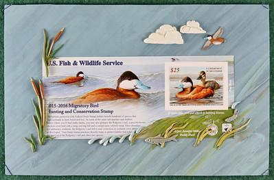 Ruddy Duck Stamp