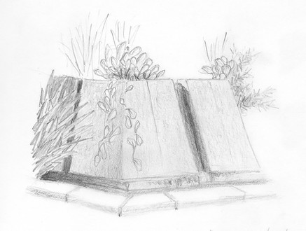 Fountain Sketch
