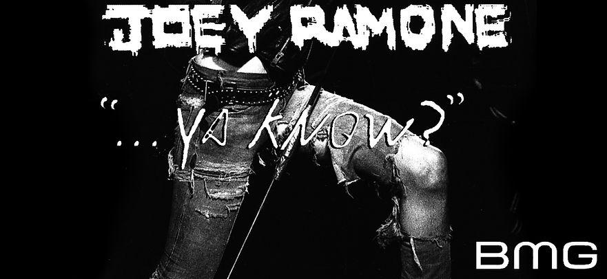 Joey Ramone, Ramones, Punk Rock, CBGB, Godlis, Danny Fields, Punk, The Clash, The Damned, The Sex Pistols, Johnny Rotten