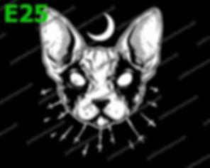 Black Metal Cat.jpg
