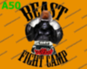 Beast Fight Camp.jpg
