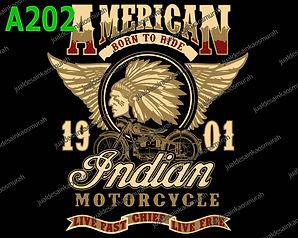 Indian Chief.jpg
