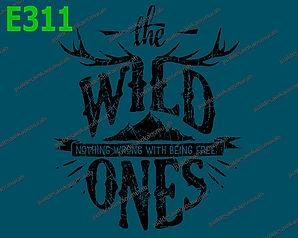 The Wild Ones.jpg