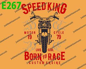 Speed King.jpg