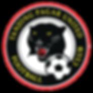 Tanjong Pagar United FC TPUFC formerly SLeague Football Club