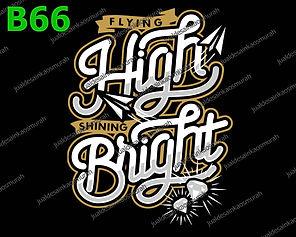 Flying High Shining Bright.jpg