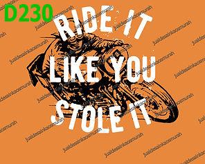 Ride It Like You Stole It.jpg