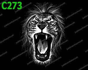 Roar of Rage.jpg