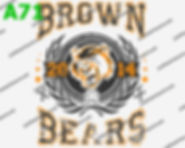 Brown Bears.jpg