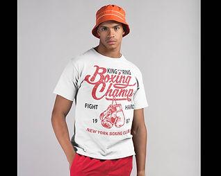 Boxing Champ P1.jpg