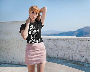 No Money No Honey P2.jpg