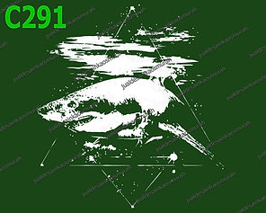 Shark in Space.jpg