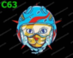 Cat in Blue Helmet.jpg