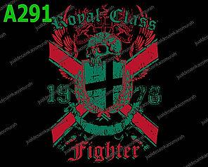 Royal Class Fighter.jpg