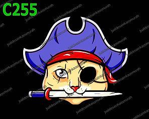 Pirate Cat.jpg