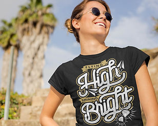Flying High Shining Bright P2.jpg