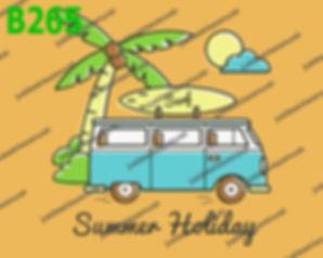 Summer Holiday Combi.jpg