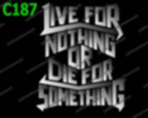 Live for Nothing.jpg
