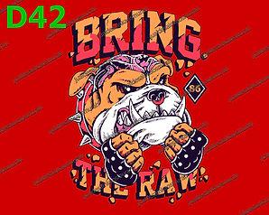 Bring the Raw.jpg