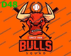 Bulls Squad.jpg