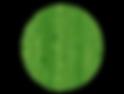 logo_round-1.png