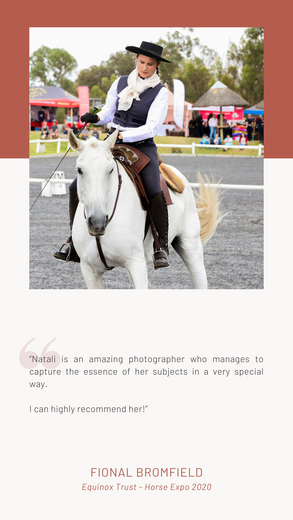 Equine Event Photography