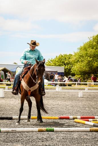 Horse Expo 2020