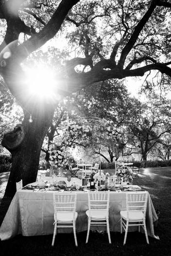 Black & White Wedding Images