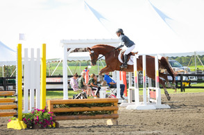 Millbrook NY - Show Jumping