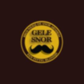 LOGO WEBSITE GELE SNOR 0509.jpg
