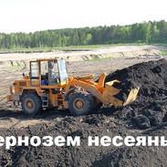Чернозем несеяный.jpg