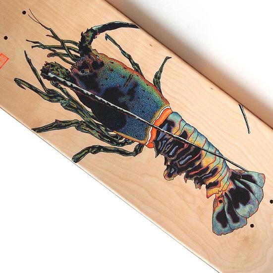 Skateboard Deck001