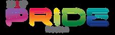 NAAAP-Pride-Boston-Color-DarkGray.png