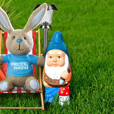 Electric Ireland Bunny. jpg