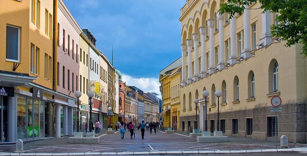 Srpski jezik i kultura