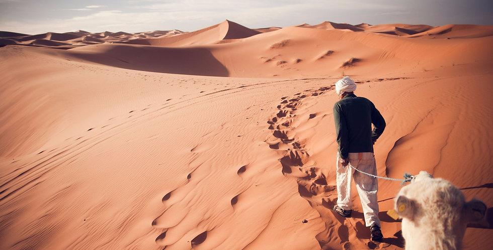 Arapski jezik i kultura