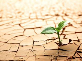 Ante tus retos, crece con Disciplina Positiva
