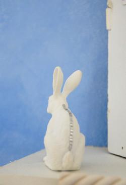 Hare with Gem Spine-Horse House Deta