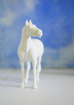 Horse Guard -Horse House Detail