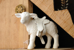Saddled Lamb - detail