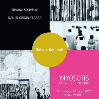 Gallery Katapult_Basel Myosotis