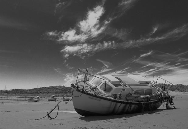 Alone On The Shoreline