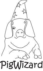 PigWizard.jpg