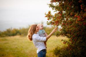 Mihnea cel dulce la 6 lunițe