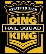 dk-hailsquad-logo.png