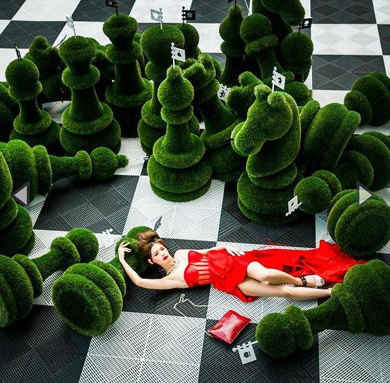 Chess in assortiment 1 meter
