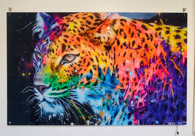 Colourful Panter By Nitra Limited Edition 'Tom Boonen' Print - 160 x 100 cm