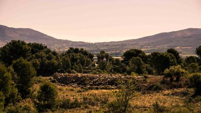 Landscape in Alicante sheeps