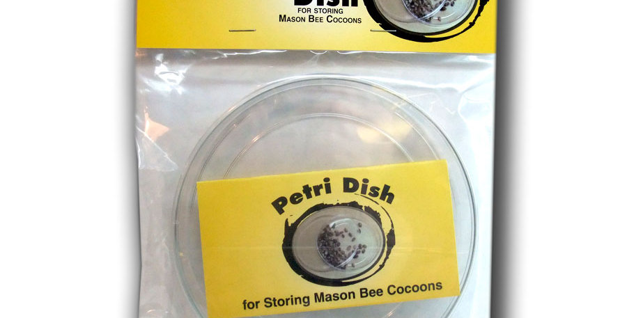 Mason Bee Petri dish
